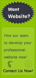 create professional website